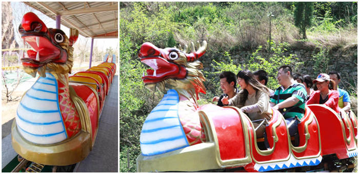 Cool Kiddie Roller Coasters Dragon Wagon