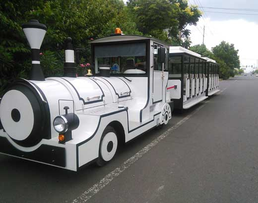 White Carnival Train for Sale