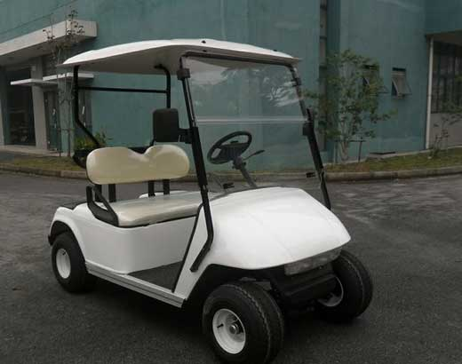 2 Seat Golf Carts for Sale